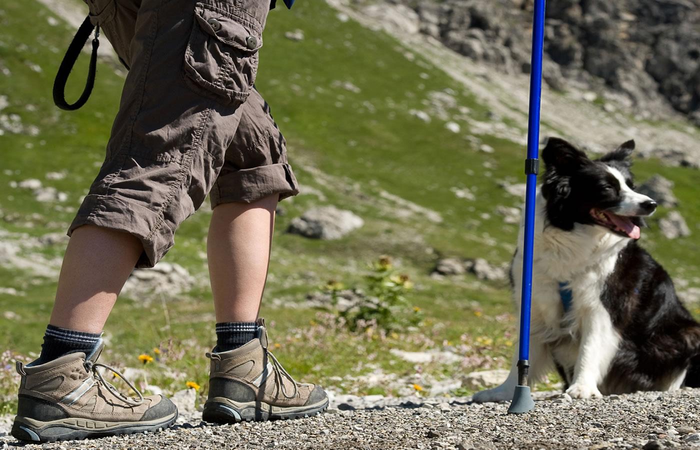 Sommer_Wander-Urlaub mit Hund in Fiss. Hotel Natürlich in Tirol.