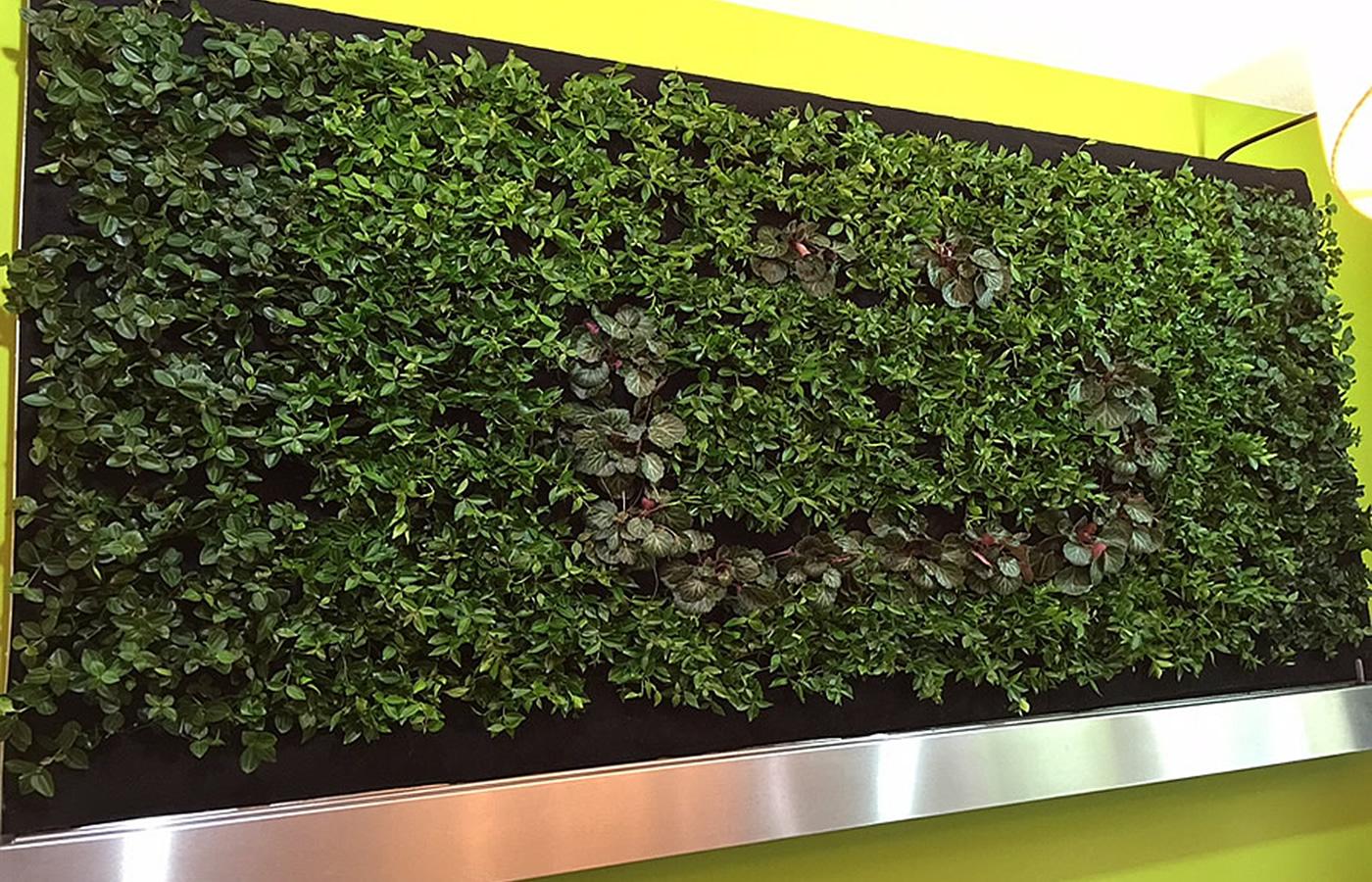 Florawall - die grüne Wand im Hotel Natürlich in Fiss, Tirol.