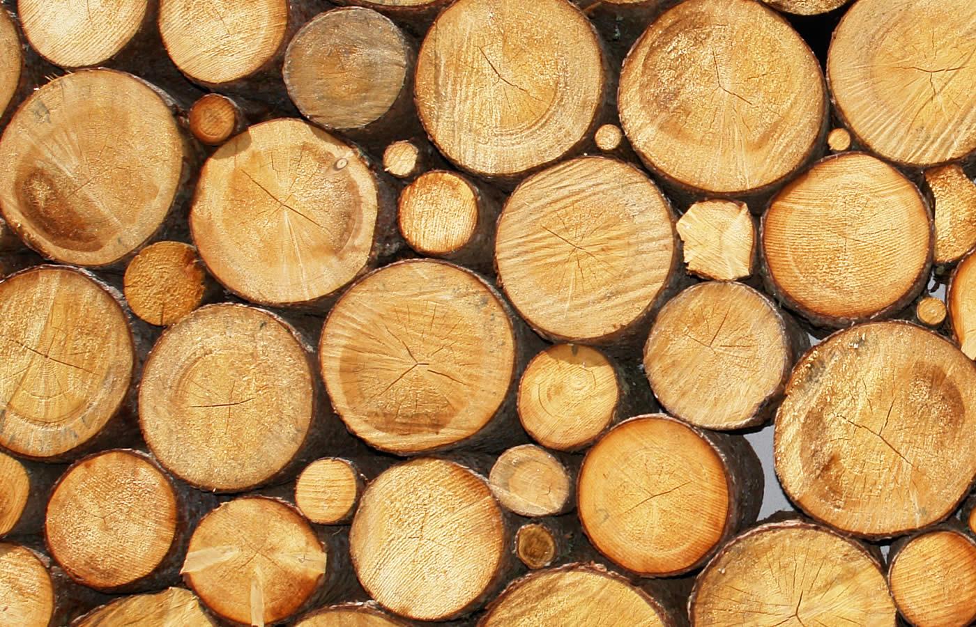 Viel Holz und natürliche Materialien im Natürlich. Hotel mit Charakter.